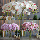 New 78 cm Artificial Fake Silk Flower Phalaenopsis Butterfly Orchid Home Decor