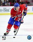 Brendan Gallagher Montreal Canadiens 2015-2016 NHL Photo SL211 (Select Size)