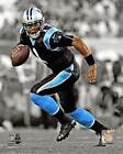 Cam Newton Carolina Panthers NFL Spotlight Action Photo QI042 (Select Size)