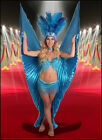4pc Bra Top & Hip Belt Beaded Fringe Sequin Burlesque Costume Showgirl Isis Wing