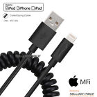 Apple iPad Mini/Air/Pro/iPod Touch MFi Lightning USB Charger Cable&Car Charger