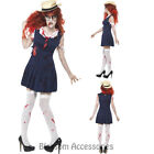 CA13 High School Zombie College Student Ladies Halloween Fancy Dress Up Costume