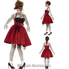 CA15 50s Rockabilly Zombie Walk Dead Ladies Halloween Fancy Dress Horror Costume