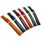 Colored Padded Croc Grain Leather Watch Band 16mm 18mm 20mm 6 Colors! D016
