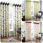Fusion - BEECHWOOD - 100% Cotton Modern Leaf Trail Eyelet Curtains