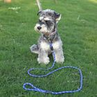 """63"""" Pet Dog Lead Training Rope Strong Nylon Puppy Dog Outdoor Leashes Ropes"""
