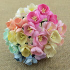50 x Mulberry Paper Flowers CHERRY BLOSSOMS  Mixed Colours Craft Embellishments