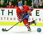 Brendan Gallagher Montreal Canadiens 2016-2017 NHL Photo TR063 (Select Size)