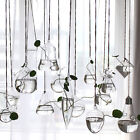 Clear Flower Hanging Vase Planter Terrarium Container Glass Home Party Decor Top