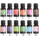 10ml Lemon Lavender Violet lily Grade Aromatherapy Essential Oil UK SHIPPING