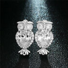 hot fashion a pair bling cute Zircon Owl earrings Sliver plated women jewelry