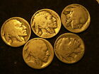 NICE LOT OF 5 VINTAGE NO DATE  BUFFALO  NICKELS  LOT 3