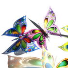 B194- Butterflies Weddings Crafts, Cake Topper Decorations Cards
