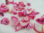 7-17mm 15/30/60grams VARIOUS SIZE ASSORTED MIXED COLORS SHELL BEAD NS03283