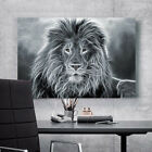 3D Majestic lion 2434 Wall Stickers Vinyl Wall Murals Print Decal Art AJSTORE US
