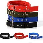 Deluxe Adjustable Thick Comfort Padded Dog Collar (Small, Medium, and Large)