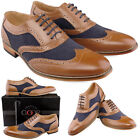 Boys Kids New Navy Brown Gatsby Wedding Suit Brogues Shoes 11 - 6