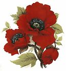Red Poppy Flower Select-A-Size Waterslide Ceramic Decals Bx image