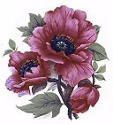 Maroon Pink Poppy Flower Select-A-Size Waterslide Ceramic Decals Bx image
