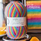 West Yorkshire Spinners Signature 4ply yarn 100g - Cocktail Range