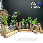 Wooden Stand Hanging Glass Vase Hydroponics Terrarium Container Pot Home Decor