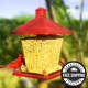 Red/Clear Plastic Hopper Bird Feeder Garden Treasures Seed Feeders Hanging Wild photo