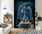 3D Grim Reaper B38 Wallpaper Wall Mural Removable Self-adhesive Vincent Zoe