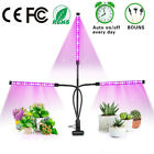 Phlizon 600W LED Grow Light Full Spectrum for Indoor Plants Hydro Veg and Flower. Buy it now for 25.99