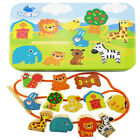 Внешний вид - Jumbo Lacing & Stringing Wooden Beads Animals with String Packaged with Metal S