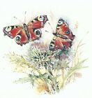Butterfly Thistle Garden Select-A-Size Waterslide Ceramic Decals Xx image
