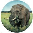 Elephant Animal Green Jungle Select-A-Size Waterslide Ceramic Decals Xx image
