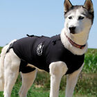 SALE - The Dog Anxiety Wrap Shirt, Calms Thunder & Firework or Seperation Fear