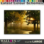 Forest LANDSCAPES  Canvas Print Framed Photo Picture Wall Artwork WA