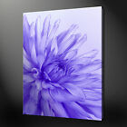 PURPLE FLOWER ABSTRACT QUALITY CANVAS PRINT PICTURE  WALL ART DESIGN FREE UK P&P
