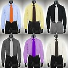 Giorgio Ferraro 7 Colors All Sizes Mens Dress Shirt Spread Collar Cotton Blend