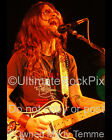 SHOOTER JENNINGS PHOTO Concert Photo in 2005 by Marty Temme 1A Telecaster