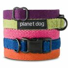 PLANET DOG FLAT HEMP ADJUSTABLE COLLAR (VARIOUS COLOURS) walk lead outdoor leash