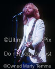 ANDREW GOLD PHOTO 1976 8X10 Concert Photo by Marty Temme 1B