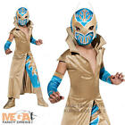 WWE Deluxe Sin Cara Boys Fancy Dress Wrestler Costume Sports Kids Outfit + Mask