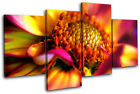Flowers BOTANICAL Floral MULTI CANVAS WALL ART Picture Print VA