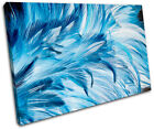 Feathers Wildlife Abstract SINGLE CANVAS WALL ART Picture Print VA