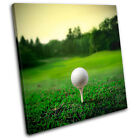 Golf Ball on Tee Sports SINGLE CANVAS WALL ART Picture Print VA