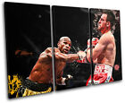 Floyd Mayweather Jr Boxing Sports TREBLE CANVAS WALL ART Picture Print VA