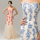 Charleston Style APPLIQUE 60s MAXI Prom Quinceanera EVENING Festival TULLE Dress