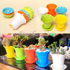 Colorful Plastic Flower Plant Pot Home Office Garden Decor Planter Tray Care