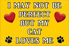 II May Not Be Perfect But My Cat Loves Me Kitten -Jumbo Magnet Gift/Present