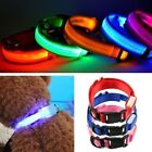 Pets Dog LED Lights Flash Night Safety Adjustable Waterproof Nylon Collar XS-XL