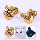 1 Pair Ear Studs Lovely Cat Design Shiny Fashion Earrings Women Jewelry