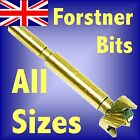 Silverline FORSTNER DRILL BITS ALL SIZES Titanium Coated hinge boring hole