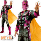 Deluxe Vision Mens Fancy Dress Avengers 2 Age Ultron Superheroes Adults Costume